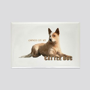 Cattle Dog Rectangle Magnet